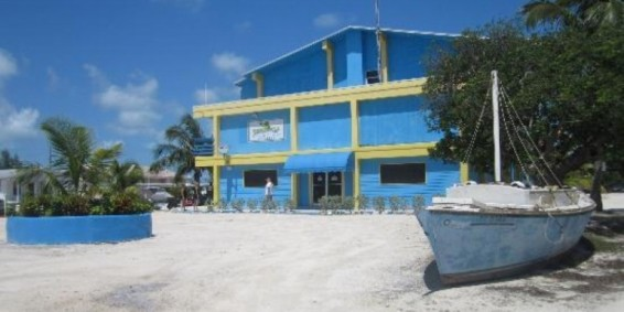 Thirsty Turtle, South Bimini