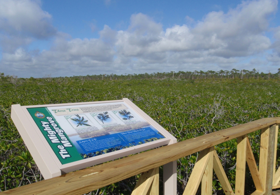 Bahamas Real Estate | Bahamas Government Plans for Two New National Parks on Grand Bahama